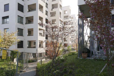 Häuser in der Rotach-Siedlung